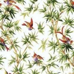 Wallpaper Birds of paradise