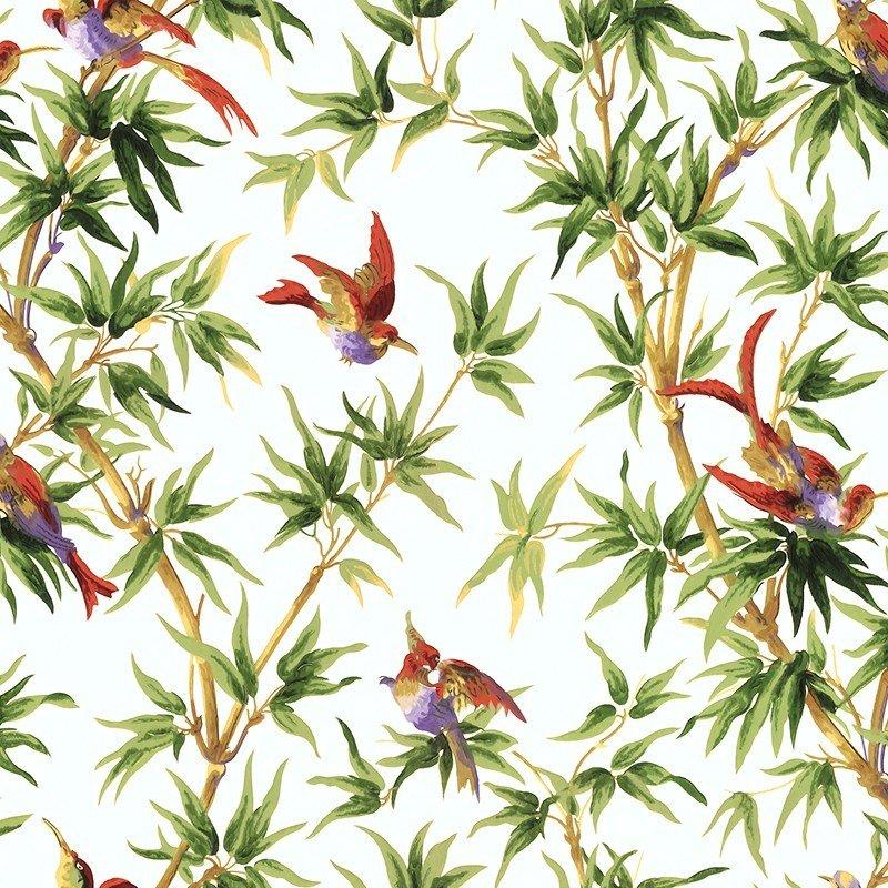 Papier peint Oiseaux de paradis